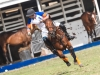 lagos-polo-club-2013-international-polo-tournament-polo-photography-polo-in-nigeria-23_0