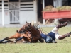 lagos-polo-club-2013-international-polo-tournament-polo-photography-polo-in-nigeria-52