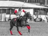 lagos-polo-club-2013-international-polo-tournament-polo-photography-polo-in-nigeria-67