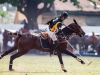 lagos-polo-club-2013-international-polo-tournament-polo-photography-polo-in-nigeria-94
