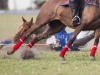 lagos-polo-club-2013-international-polo-tournament-polo-photography-polo-in-nigeria-97