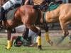 lagos-polo-club-2013-international-polo-tournament-polo-photography-polo-in-nigeria-106