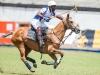lagos-polo-club-2013-international-polo-tournament-polo-photography-polo-in-nigeria-115