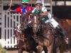 lagos-polo-club-2013-international-polo-tournament-polo-photography-polo-in-nigeria-79