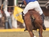 2012-mtn-lagos-international-polo-tournament-high-goal-week-_-188
