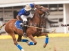 2012-mtn-lagos-international-polo-tournament-high-goal-week-_-208