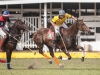 2012-mtn-lagos-international-polo-tournament-high-goal-week-_-68