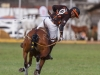 2012-mtn-lagos-international-polo-tournament-low-goal-week-731